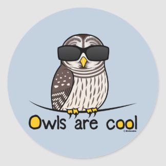 Owls are cool! classic round sticker