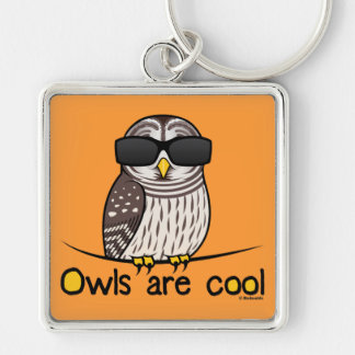 Owls are cool Silver-Colored square keychain