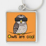 Owls are cool keychains