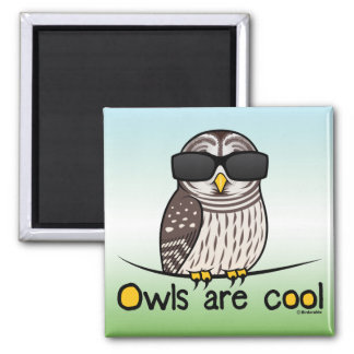 Owls are cool! 2 inch square magnet
