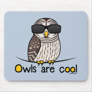 Owls are cool! mouse pad
