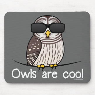 Owls are cool mouse pad