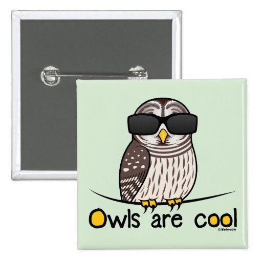 Owls are cool! pin