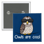 Owls are cool pin