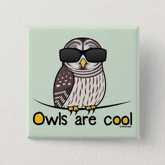 Owls are cool! pinback button