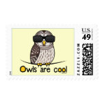 Owls are cool! stamp