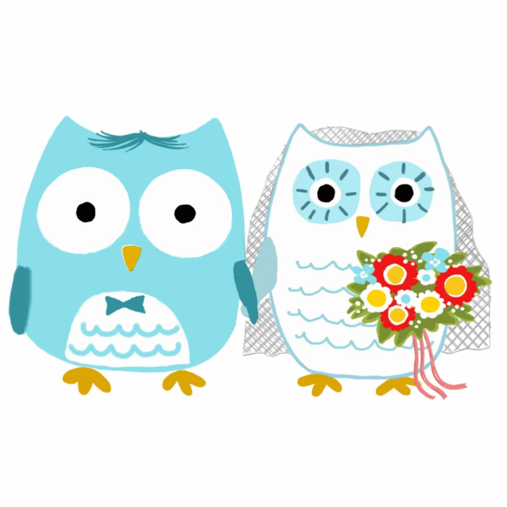 Owls Bride and Groom - Fun Wedding Cake Topper Photo Sculptures