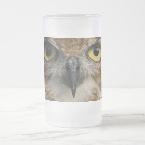 Owls Eyes Frosted Glass 16 Oz Frosted Glass Beer Mug