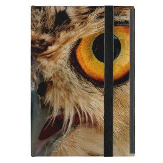 Owls Eyes iPad Mini Case