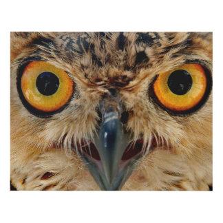 Owls Eyes Panel Wall Art