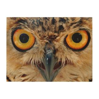 Owls Eyes Wood Wall Art