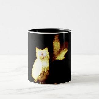 Owls Glowing in the Dark Mug