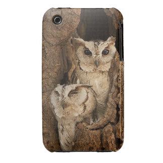 Owls Hiding Case-Mate iPhone 3 Case