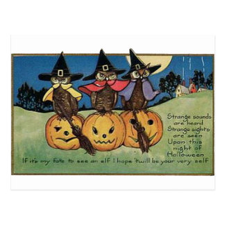 Owls in Witch Hats Postcard