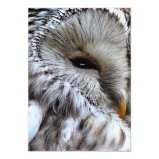 OWLS INVITATIONS