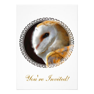 OWLS PERSONALISED ANNOUNCEMENTS