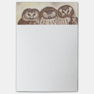 Owls large post it note pad