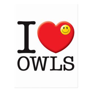 Owls Love Postcard