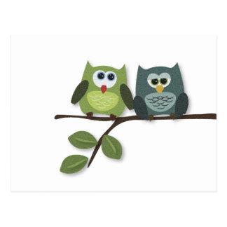 Owls Nest Postcard