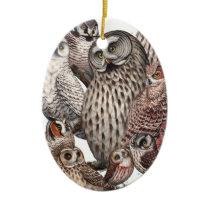 Owls of the Northeast dark.png Ceramic Ornament