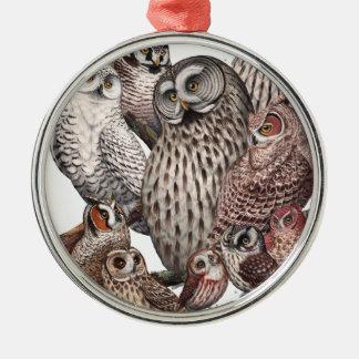 Owls of the Northeast dark.png Metal Ornament