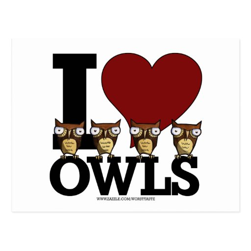 owls post card