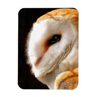 OWLS RECTANGULAR PHOTO MAGNET