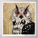 Owl's Stare print
