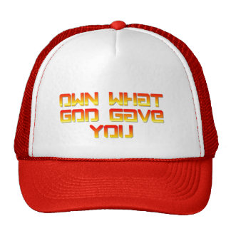 Own What God Gave You Hat
