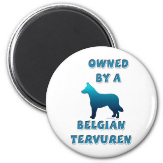 Owned by a Belgian Tervuren Magnet