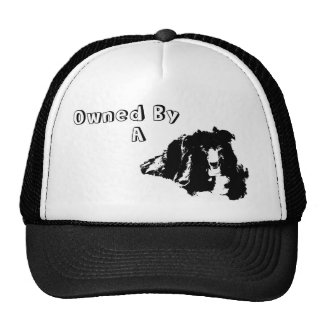 Owned By A Border Collie Funny Dog Trucker Hat
