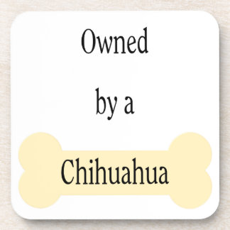 owned by a Chihuahua Coaster