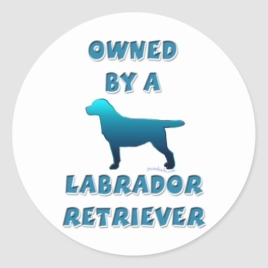 Owned by a Labrador Retriever Classic Round Sticker