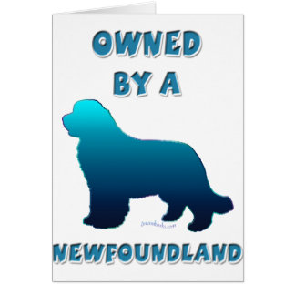 Owned by a Newfoundland Card