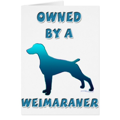 Owned by a Weimaraner Card
