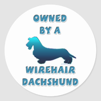 Owned by a Wirehair Dachshund Classic Round Sticker