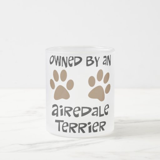 Owned By An Airedale Terrier 10 Oz Frosted Glass Coffee Mug