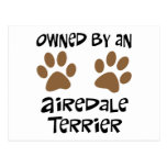 Owned By An Airedale Terrier Postcard