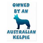 Owned by an Australian Kelpie Postcard