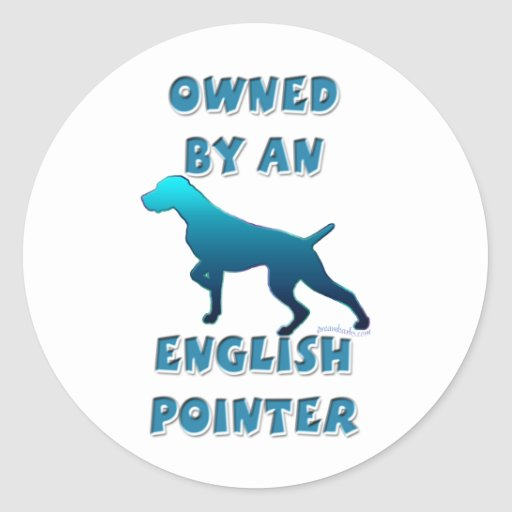 Owned by an English Pointer Classic Round Sticker