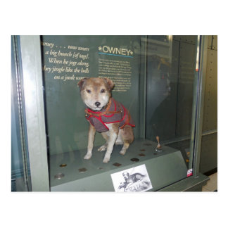Owney National Post Office Museum Mascot Postcard