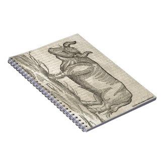 Ox Spiral Notebook