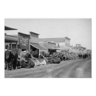 Ox Teams along Main Street of Sturgis Photograph Poster