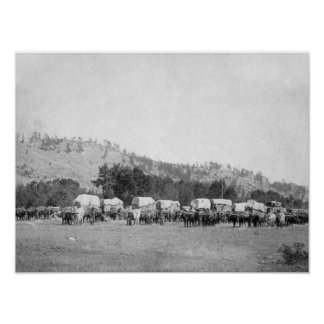 Ox Teams and Wagons in a Valley of the Black Poster