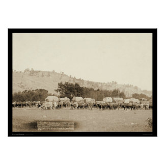 Ox Teams & Wagons Freighting Black Hills SD 1887 Poster