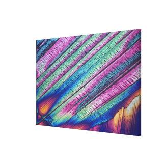Oxalic acid crystals stretched canvas prints