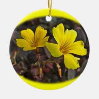 Oxalis Amarillo-Floreció el Houseplant Adorno Navideño Redondo De Cerámica
