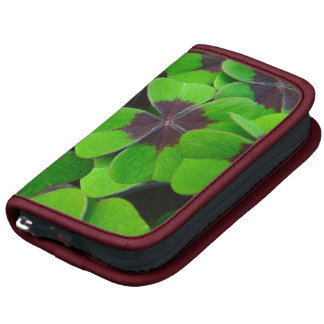 Oxalis Leaves - Red and Green Organizers