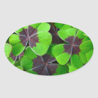 Oxalis Leaves - Red and Green Oval Sticker