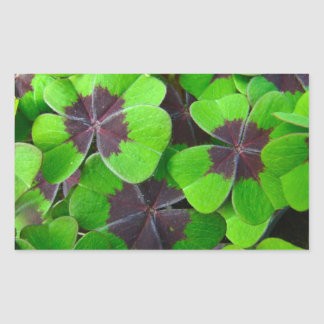 Oxalis Leaves - Red and Green Rectangular Sticker